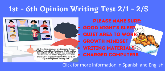 Opinion Writing Test